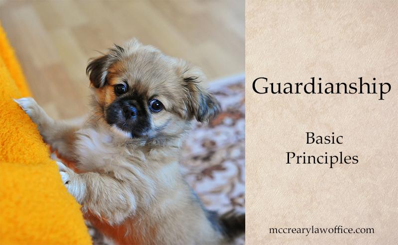 Guardianship Basics
