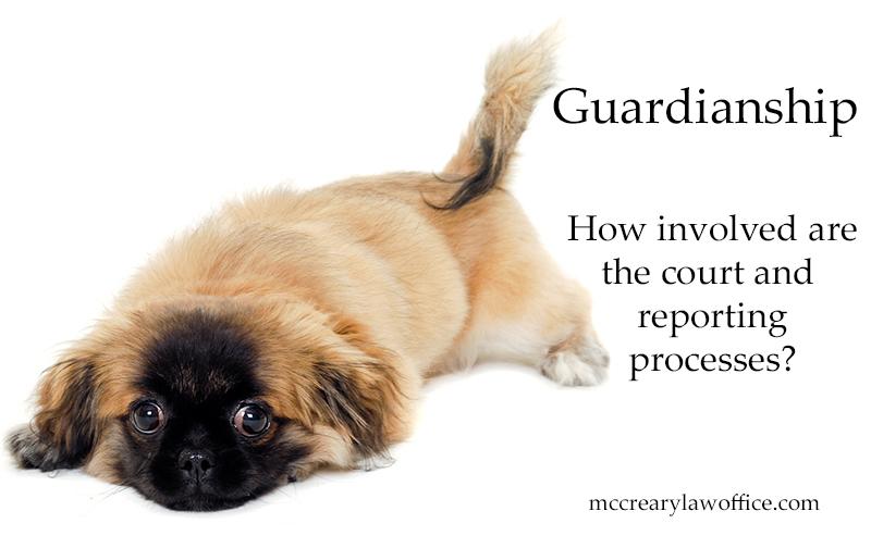 Guardianship Process